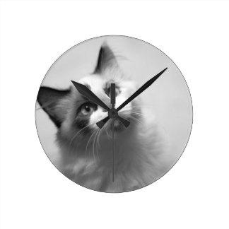 Relógio Redondo Retrato preto e branco do gatinho