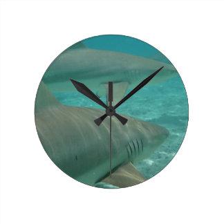 Relógio Redondo shark