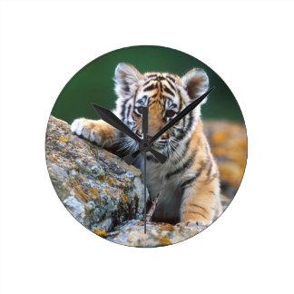 Relógio Redondo Tigre Cub do bebê