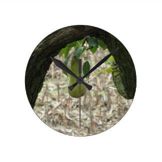 Relógio Redondo Única pera verde que pendura na árvore