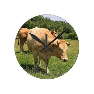 Relógio Redondo Vacas no campo, EL Camino, espanha 2