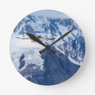 Relógio Redondo Vôo Patagonian Austral do pássaro