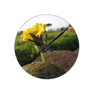 Relógio Redondo Wildflower amarelo que cresce em pedras no por do