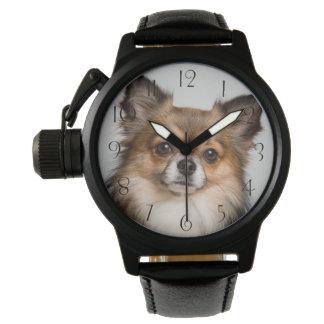 Relógio Retrato impressionante da chihuahua