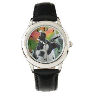 Relógio Seletor-placa bonito do retrato do filhote de