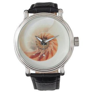 Relógio Shell da vida