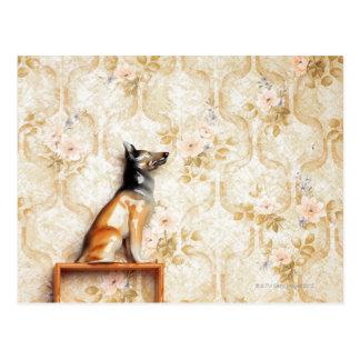 Representação animal, artigo da novidade, cartão postal