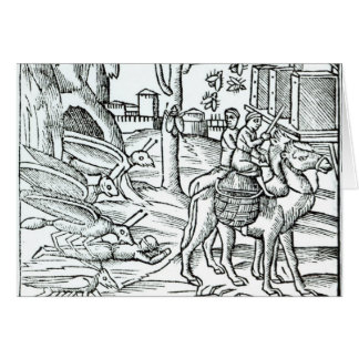 Representação do praga, 1572 cartões