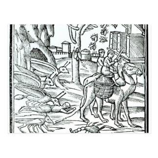 Representação do praga, 1572 cartão postal