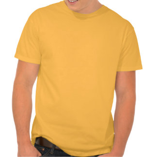 representação no congresso t-shirts