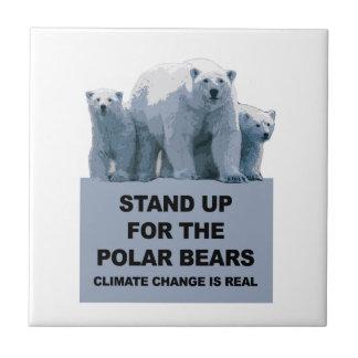 Represente acima os ursos polares
