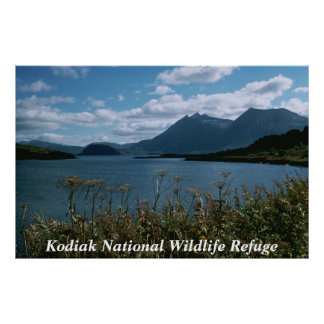 Reserva natural do nacional do Kodiak Poster