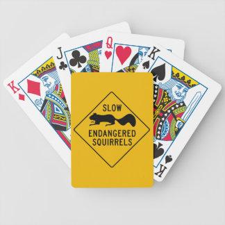 Retarde esquilos pstos em perigo, sinal de aviso, baralhos de cartas