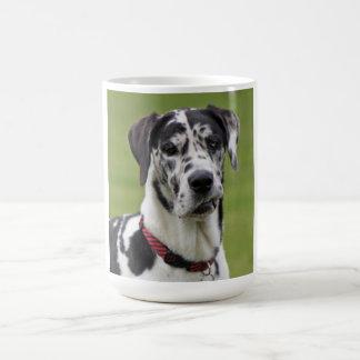 Retrato bonito da foto do cão de great dane, caneca de café