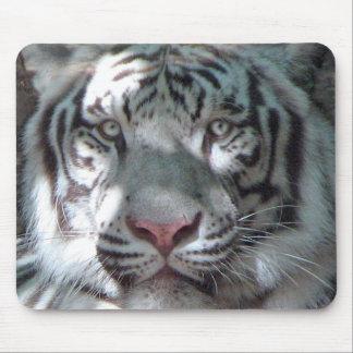 Retrato branco do tigre mouse pad