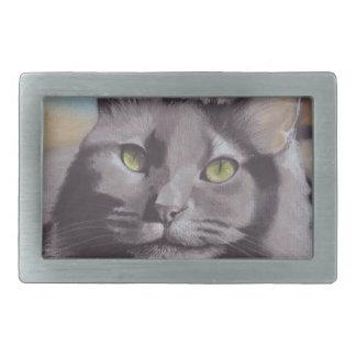 Retrato cinzento do animal de estimação do gato