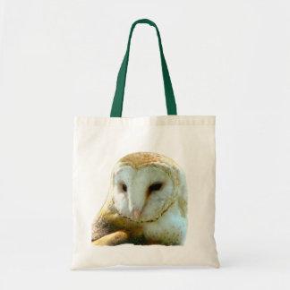 Retrato considerável da coruja de celeiro bolsas