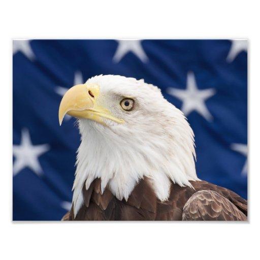 Retrato da águia americana com estrelas foto arte