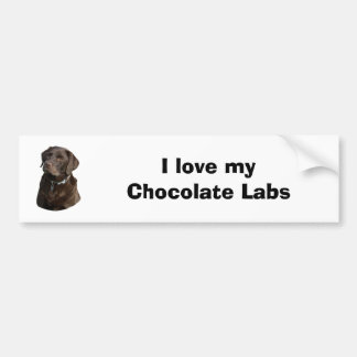 Retrato da foto do cão de Labrador do chocolate Adesivo Para Carro