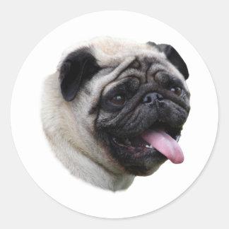 Retrato da foto do cão do Pug Adesivo Em Formato Redondo