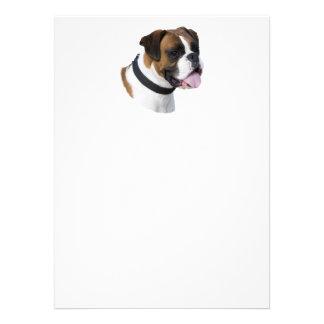 Retrato da foto do cão do pugilista da jovem corça convites personalizados