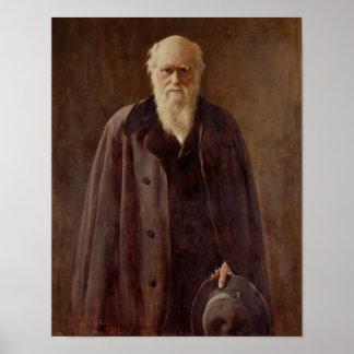 Retrato de Charles Darwin 1883 Pôster