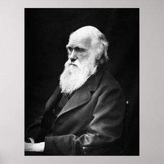Retrato de Charles Darwin Poster
