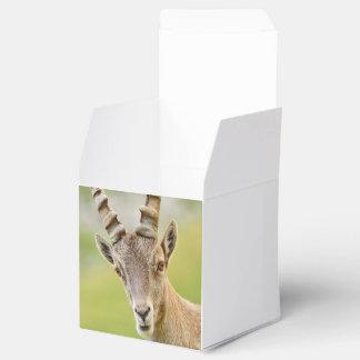 Retrato de um íbex caixinhas de lembrancinhas para casamentos
