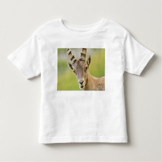 Retrato de um íbex camiseta infantil