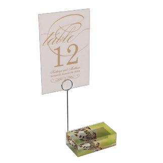 Retrato de um íbex suporte para cartões de mesas