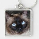 Retrato do gato Siamese Chaveiros