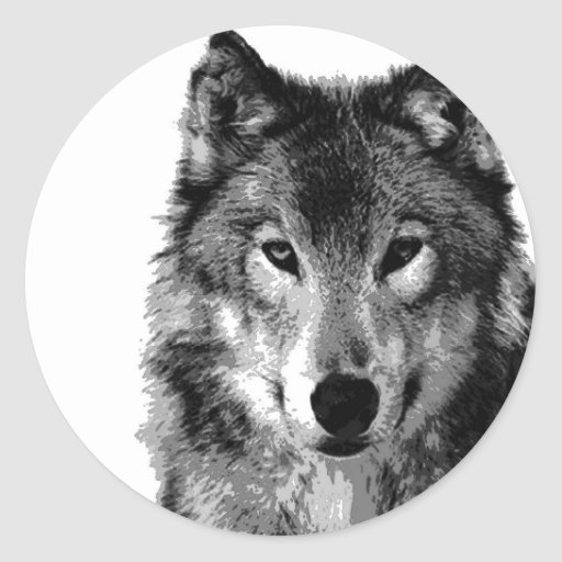 Retrato do lobo preto & branco adesivos redondos