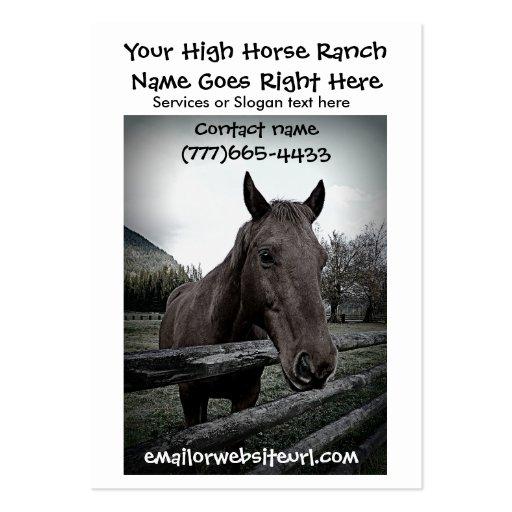 Retrato fotográfico do cavalo de Brown Modelos Cartoes De Visitas