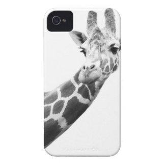 Retrato preto e branco de um girafa capinha iPhone 4