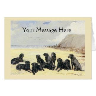 Retrievers de Labrador no cartão da praia