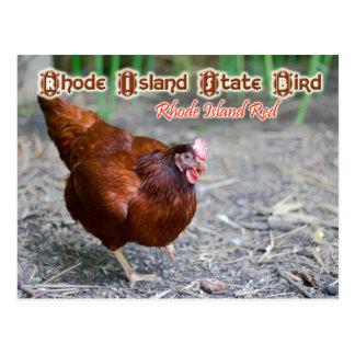 Rhode - pássaro de estado da ilha: Rhode - Cartão Postal