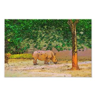 Rinoceronte Foto Arte