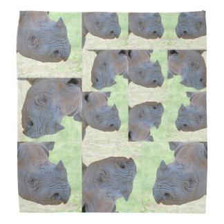 Rinoceronte preto faixas para cabeça