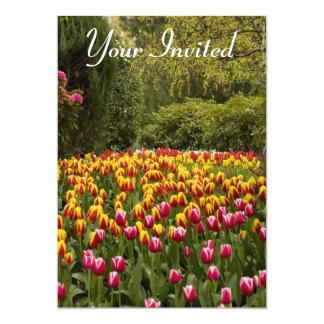 Rio das tulipas na flor completa convite 12.7 x 17.78cm