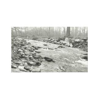 Rio de fluxo preto e branco em canvas