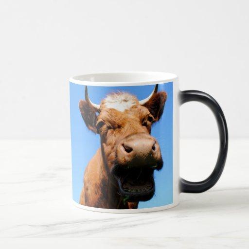 Rir vaca canecas
