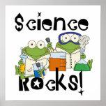 Rochas da ciência dos sapos poster