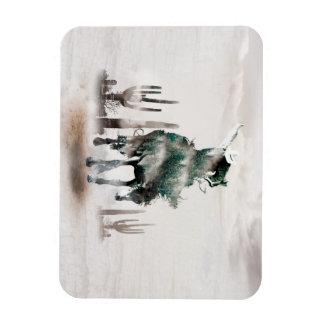 Rodeio - exposição dobro - vaqueiro - vaqueiro do ímã