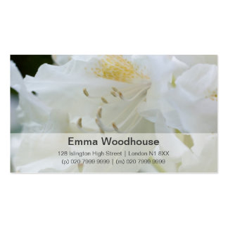 Rododendro branco do rododendro | Weisse Cartoes De Visita