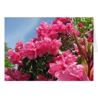Rododendros - Vancôver, BC cartão de nota