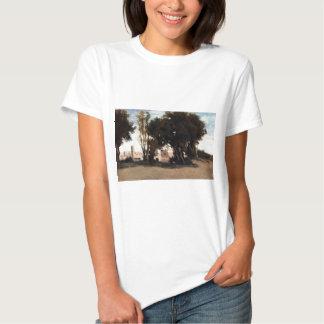 Roma, coliseu, vista dos jardins de Farnese Tshirts