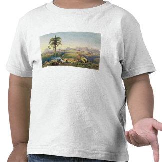 Roraima, uma escala notável de montanhas do tshirt