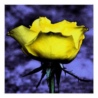 Rosa amarelo Digital da foto contemporânea de Poster Perfeito