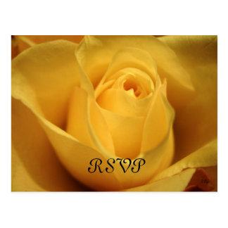 Rosa amarelo, RSVP, S Cyr Cartão Postal