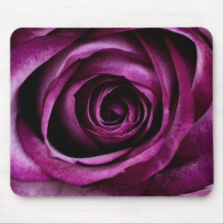 Rosa aveludado do roxo mouse pad